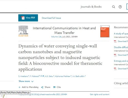 Dynamics of water conveying single-wall carbon nanotubes and magnetite nanoparticles subject to induced magnetic field: A bioconvective model for theranostic applications